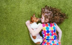 Un 92% de los niños consideran que los perros y gatos les dan cariño