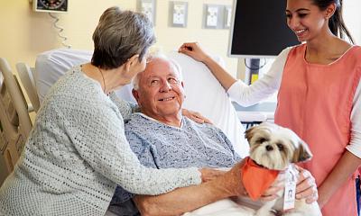 Terapias asistidas con perros para personas con Alzheimer en España