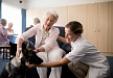 Dónde estudiar terapia asistida con animales en España